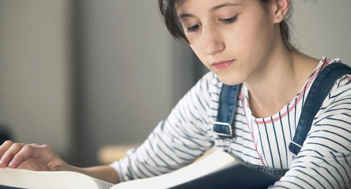 libros educación escuela enseñanza