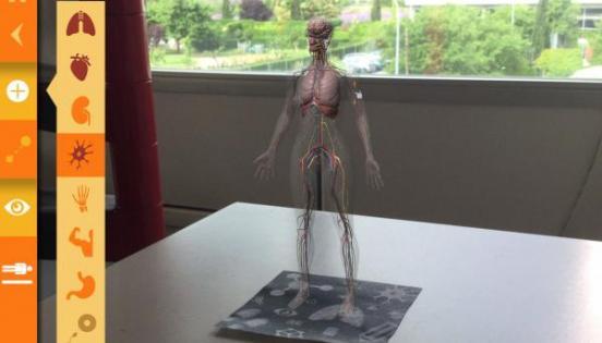 ARTOM: el cuerpo humano